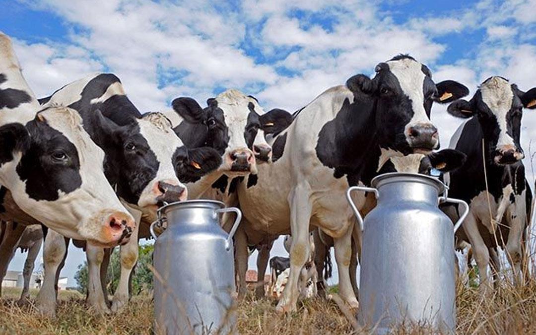 Productores de leche buscan apoyos de crecimiento