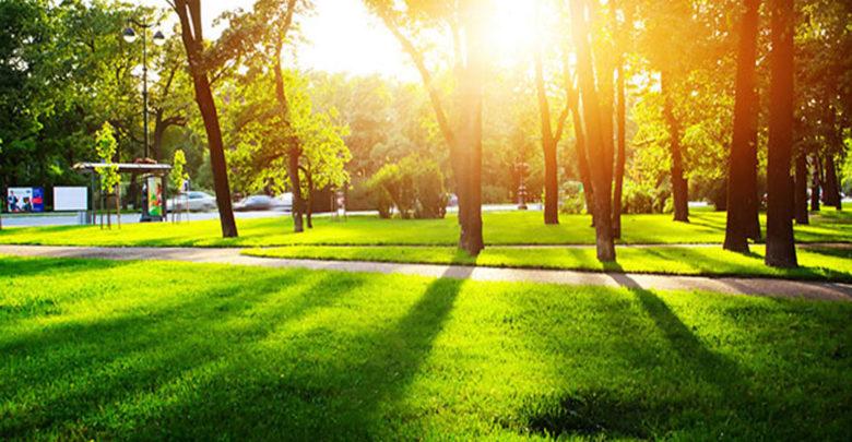 Resultado de imagen para areas verdes